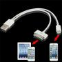 2v1 nabíjecí a synchronizační kabel (lightning a 30pin) pro iPhone / iPad